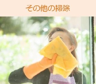 その他の掃除(窓拭きなど)